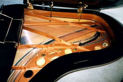 Schimmel / Colani Pegasus Grand Piano » image 2