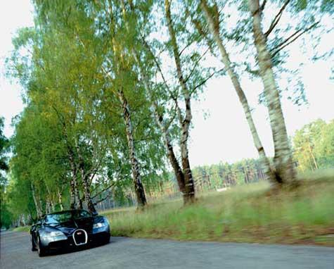 Bugatti Veyron 16.4 Grand Sport  » image 1