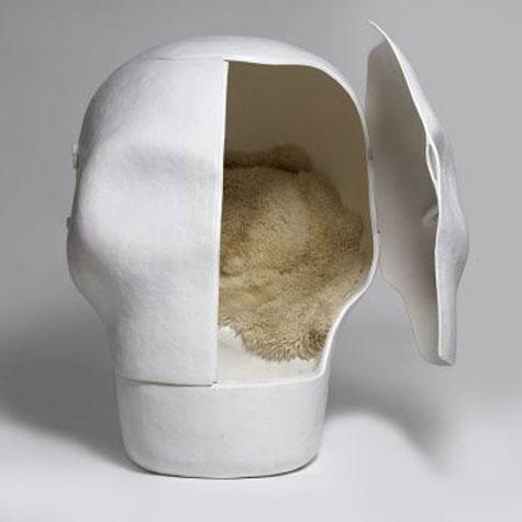 Wellness Skull » image 5