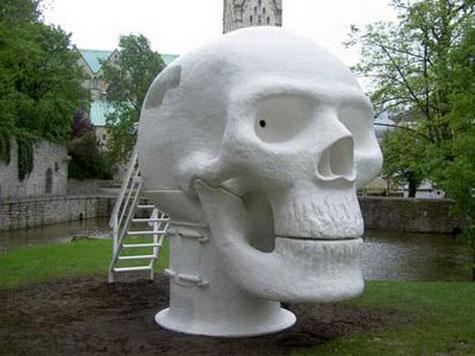 Wellness Skull » image 7