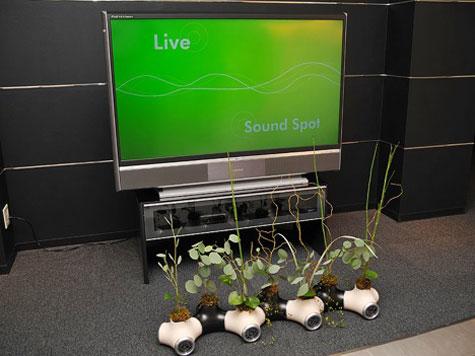 JVC Sound Garden  » image 2
