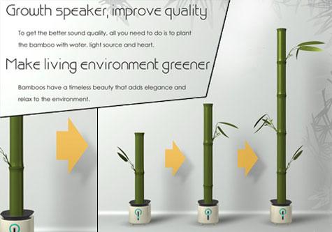 Bamboos host speakers » image 2