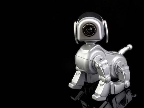 USB Robo-Pup Cam » image 01