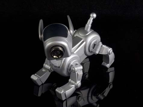 USB Robo-Pup Cam » image 03