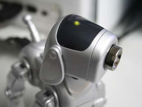 USB Robo-Pup Cam » image 06