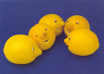 Fun Of The Week 9 : Funny Fruits 2 » image 10