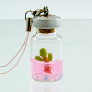 Tokyo Micro Garden : Like Plants, But Dont Have A Green Thumb? » image 2