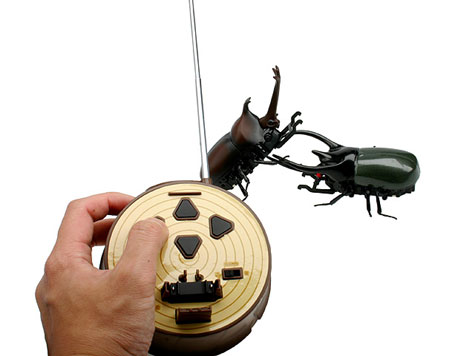 Rechargeable Remote Control Beetle Battle - CAUCASUS BEETLE » image 4