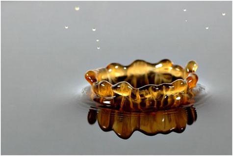 Water Splash Arts » image 2